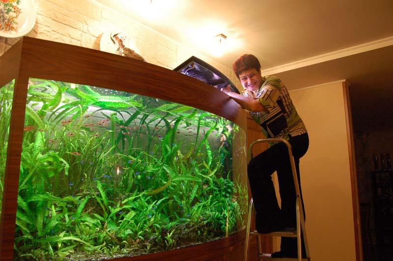 Как сделать жёсткую воду в аквариуме